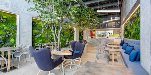 Thiết kế quán cafe sân vườn diện tích nhỏ chị Trang - Hà Đông