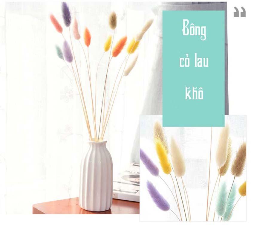 Bong-co-lau-kho-dung-trang-tri-GHS-6231