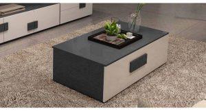 Ban-tra-sofa-phong-cach-thanh-lich-GHS-4521 (6)