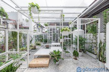 Thiết kế không gian thư giãn xanh mát trên tầng thượng tại Hà Nội