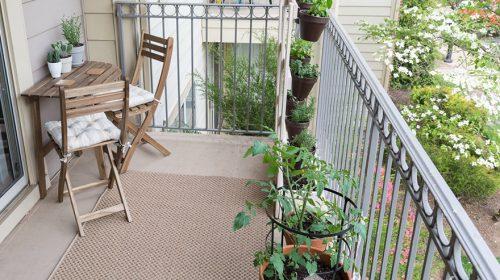 Thiết kế logia chung cư ấn tượng - mang thiên nhiên vào căn hộ của bạn