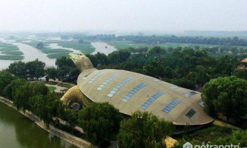 Xuýt xoa với toà nhà kiến trúc hình con rùa lớn nhất thế giới