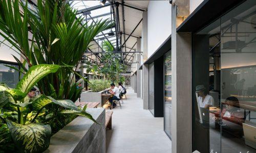 Jungle Station- quán cà phê độc đáo cải tạo từ nhà máy in cũ