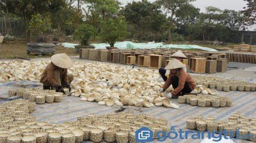Về thăm làng nghề đan cỏ tế Lưu Thượng - nơi làm giàu từ loài cây dại