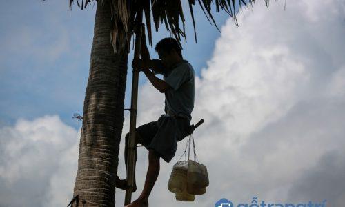 Độc đáo nghề nấu đường thốt nốt của dân tộc Khmer An Giang