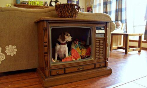 5 ý tưởng trang trí nhà cực độc đáo và hữu dụng từ việc tận dụng tivi cũ