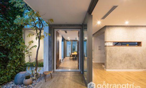 Thiết kế không gian xanh giúp ngôi nhà bừng sáng và thông thoáng