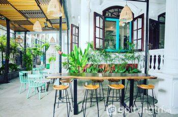 Chất lừ không gian cà phê xanh thu hút đông đảo giới trẻ