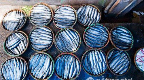 Làng nghề hấp cá ở Quy Nhơn - Làng nghề nổi tiếng ở miền Trung
