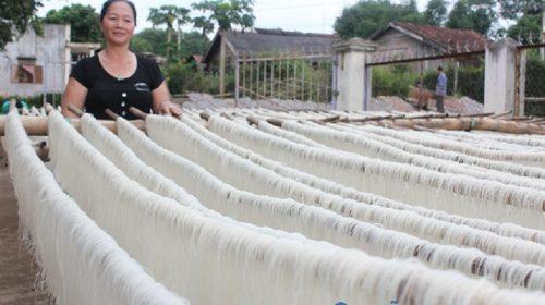 Khám phá làng nghề làm miến dong Lại Trạch - Hưng Yên