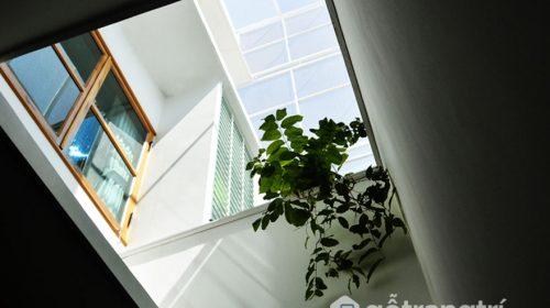 Nhà tổ kén Nha Trang - Không gian sống tĩnh lặng nhiều cây xanh