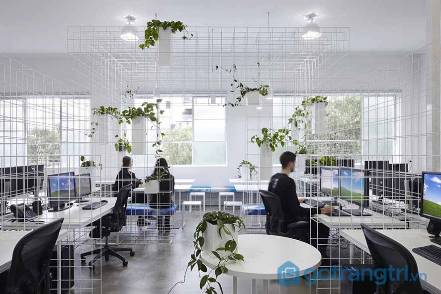 Thiết kế nội thất văn phòng không tách biệt không gian riêng và chung