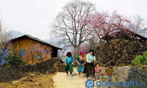 Du lịch Hà Giang, nhất định phải ghé thăm thung lũng Sủng Là