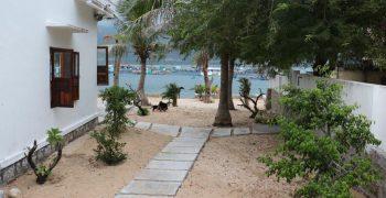 """Homestay trên đảo Bình Hưng đẹp """"nức nở"""" với tầm view 2 trong 1"""
