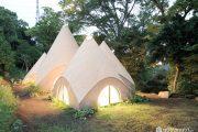 Ngôi nhà xoắn ốc độc đáo giữa rừng cây xanh mướt ở Nhật Bản