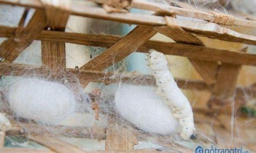 Nét đẹp văn hóa của làng cổ tơ tằm Vọng Nguyệt thu hút du khách