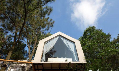 Ngôi nhà trong mơ độc và lạ treo lơ lửng giữa rừng thông ở Hà Nội