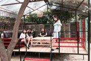 Homestay Bơ House - chuyến du lịch Mộc Châu làm say lòng người