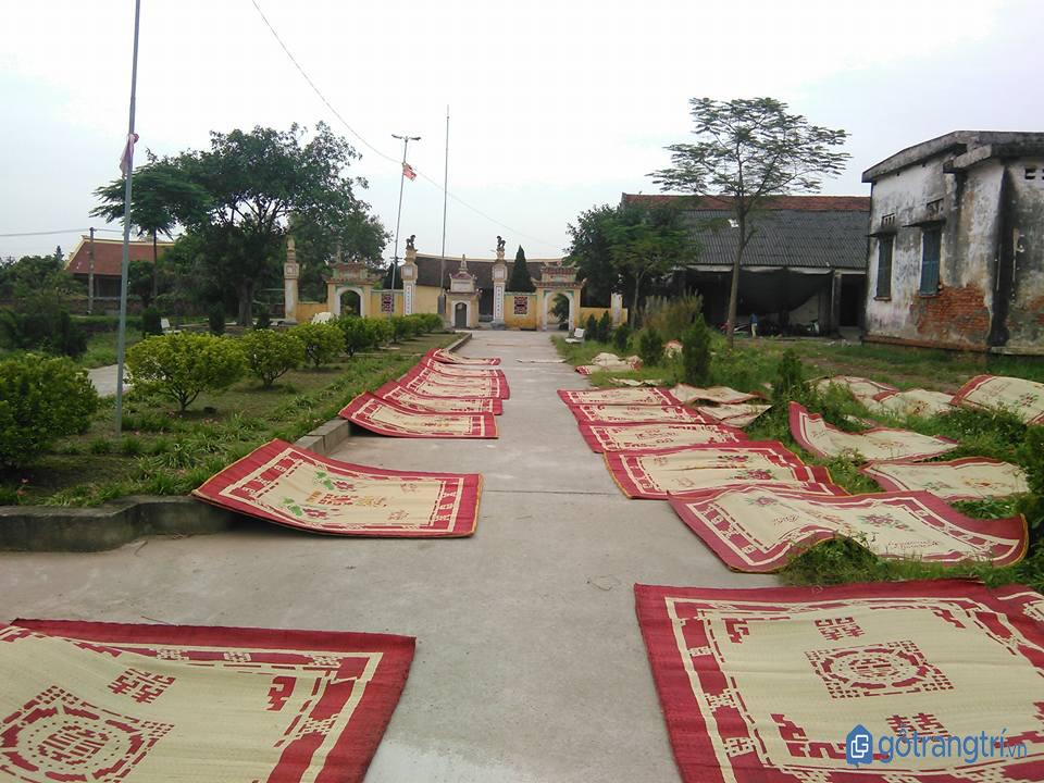 Sản phẩm chiếu làng Hới phơi trước đền thờ Trạng chiếu