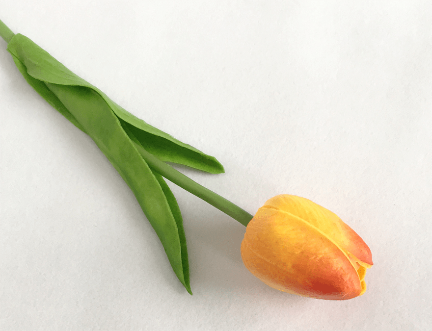 Hoa-tuylip-gia-trang-tri-khong-gian-song-gia-dinh-GHS-6420