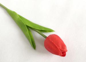 Hoa-tuylip-gia-trang-tri-khong-gian-song-gia-dinh-GHS-6420 (3)