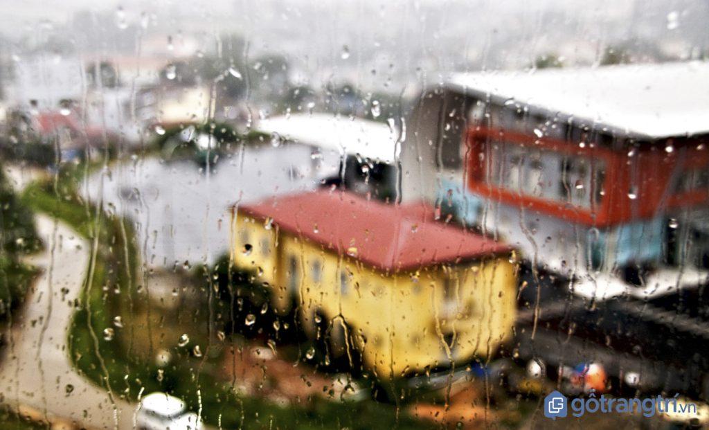 Du lịch Đà Lạt vào mùa mưa (ảnh internet)