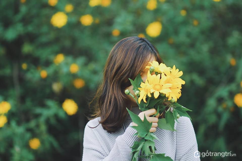 Mùa hoa dã quỳ tuyệt đẹp trong mắt các bạn trẻ (ảnh internet)
