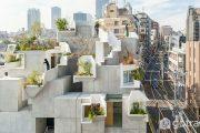 Tree-ness House - Công trình độc đáo với chiếc hộp giấy xếp chồng