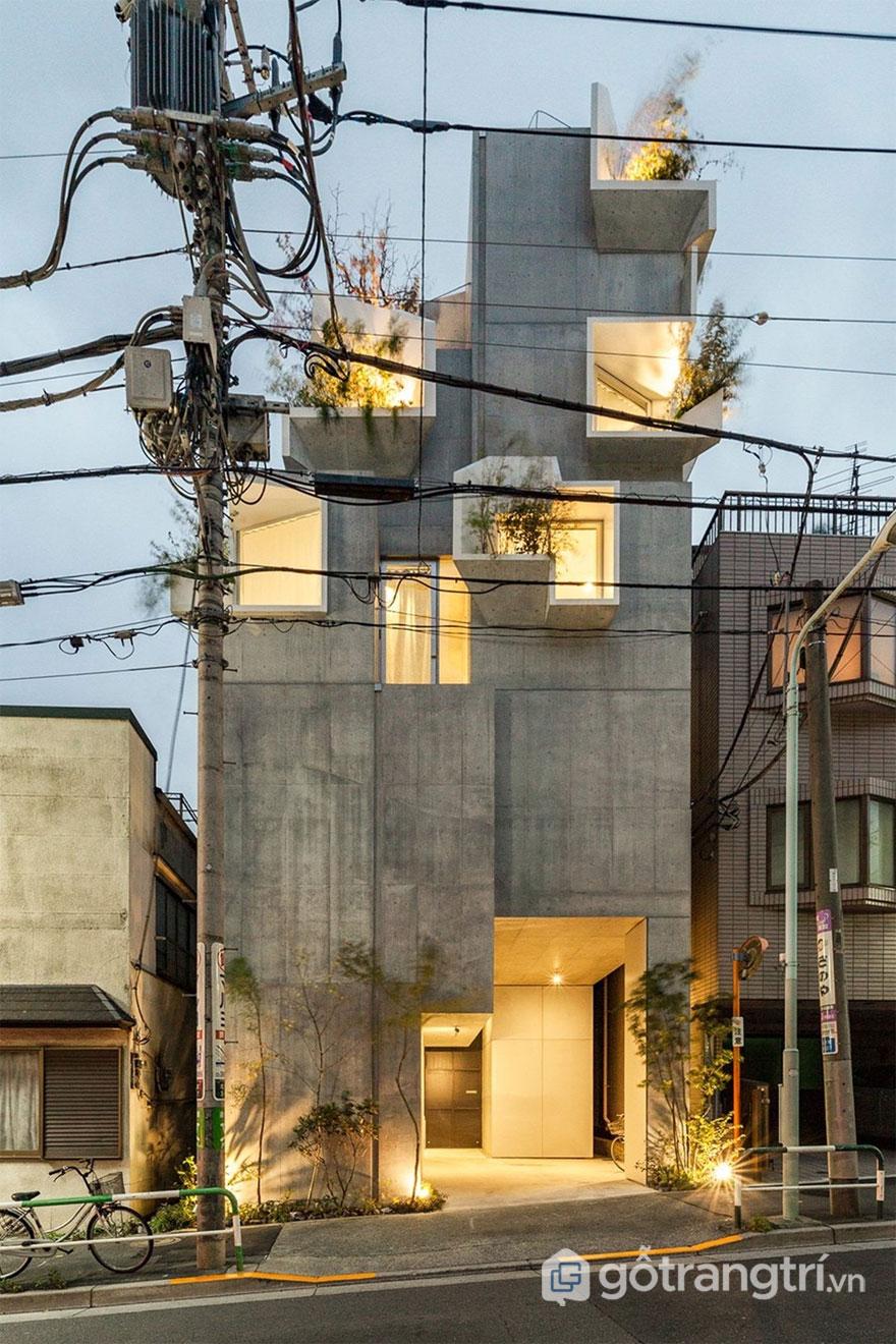 Tree Ness House nằm trên khu đất sâu và hẹp - Ảnh: Vincent Hecht