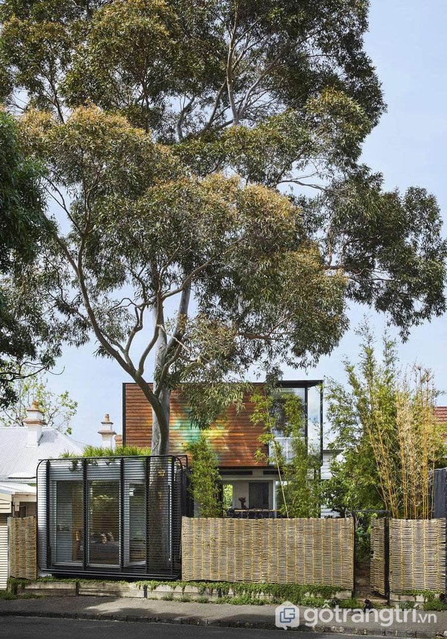 Kiah House - Công trình kiến trúc hiện đại giữa văn phòng và nhà ở (Ảnh: Internet)