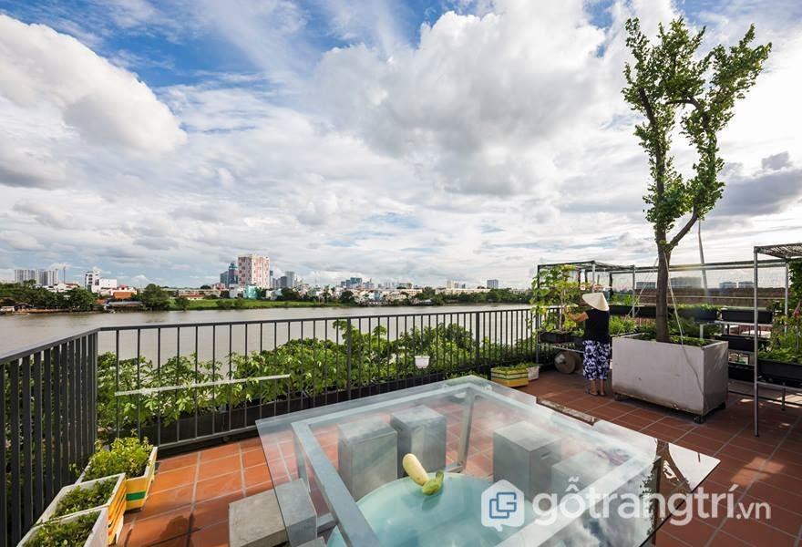 Theo kiến trúc hiện đại, Khoảng sân thượng được thiết kế để có thể nhìn ra sông Sài Gòn với sự tươi xanh của những luống rau xanh, sạch - Ảnh: Hiroyuki Oki