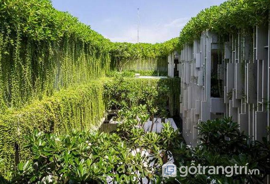 Naman Pure Spa sở hữu hệ thống vườn treo cây xanh mang đến màu sắc đẹp của kiến trúc spa - Ảnh: Internet
