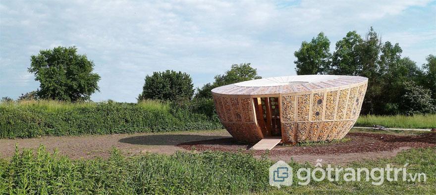 Bắp có thể được sử dụng như vật liệu bền vững cách nhiệt thực thụ - Ảnh: StAndré-Lang Architectes