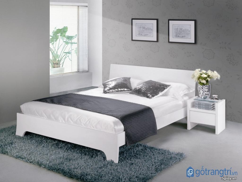 Giường ngủ đẹp bằng nhựa thiết kế hiện đại, giá thành rẻ. (ảnh: internet)