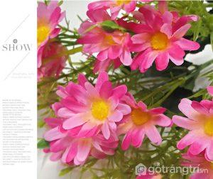 Hoa-cuc-nho-cam-lo-de-ban-dep-GHS-6521 (8)