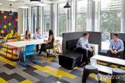 Chủ nghĩa lập thể hình thành từ lĩnh vực thiết kế nội thất là gì?