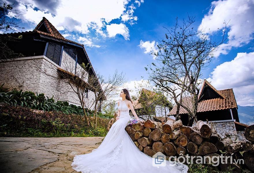 Những địa điểm chụp ảnh cưới ở Sapa đẹp lung linh không nên bỏ lỡ (Ảnh: Internet)