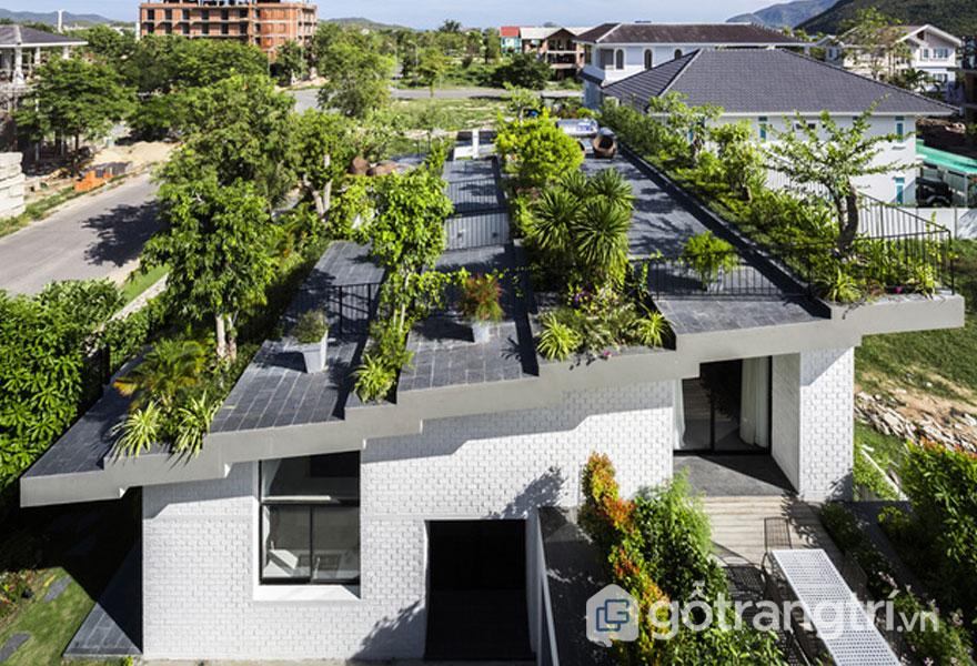 Ngôi nhà mái là vườn cây xanh mát ở Nha Trang - Ảnh: Internet