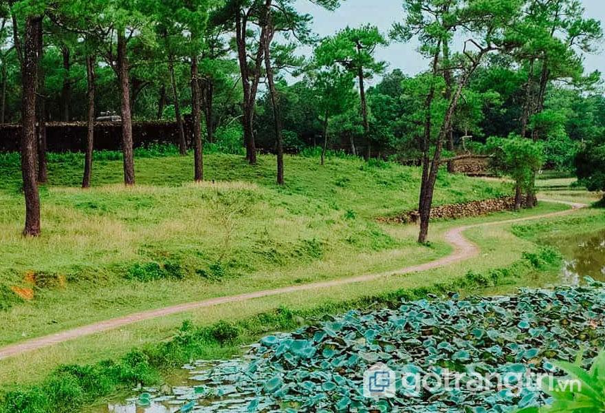 Phong cảnh xinh tươi của núi đồi - Ảnh: Nguyễn Thị Mai Trang