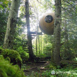 Nhà quả cầu Free spirit (Vancouver Island) - Ảnh internet