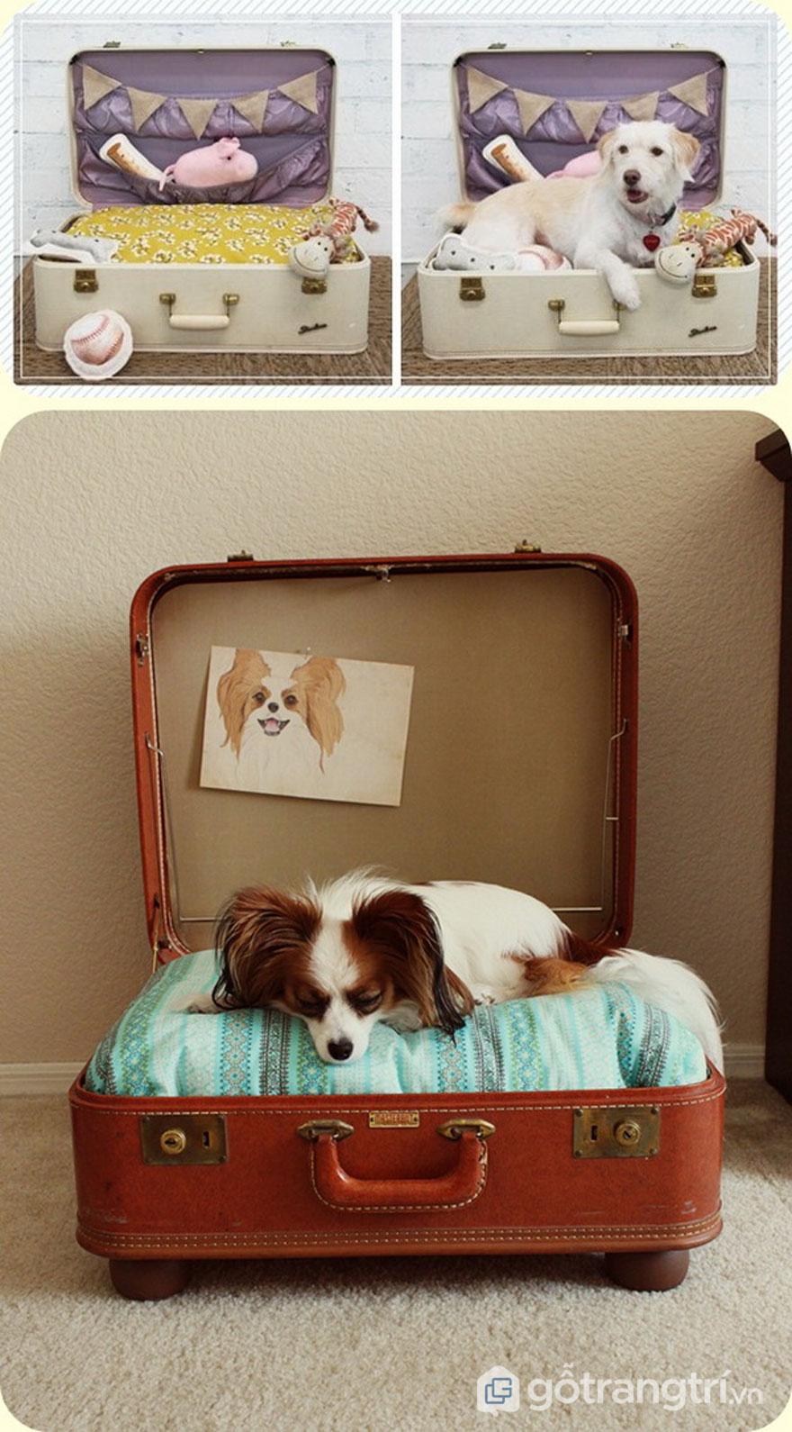 Tái chế vali cũ làm giường cho cún yêu - Ảnh: Internet