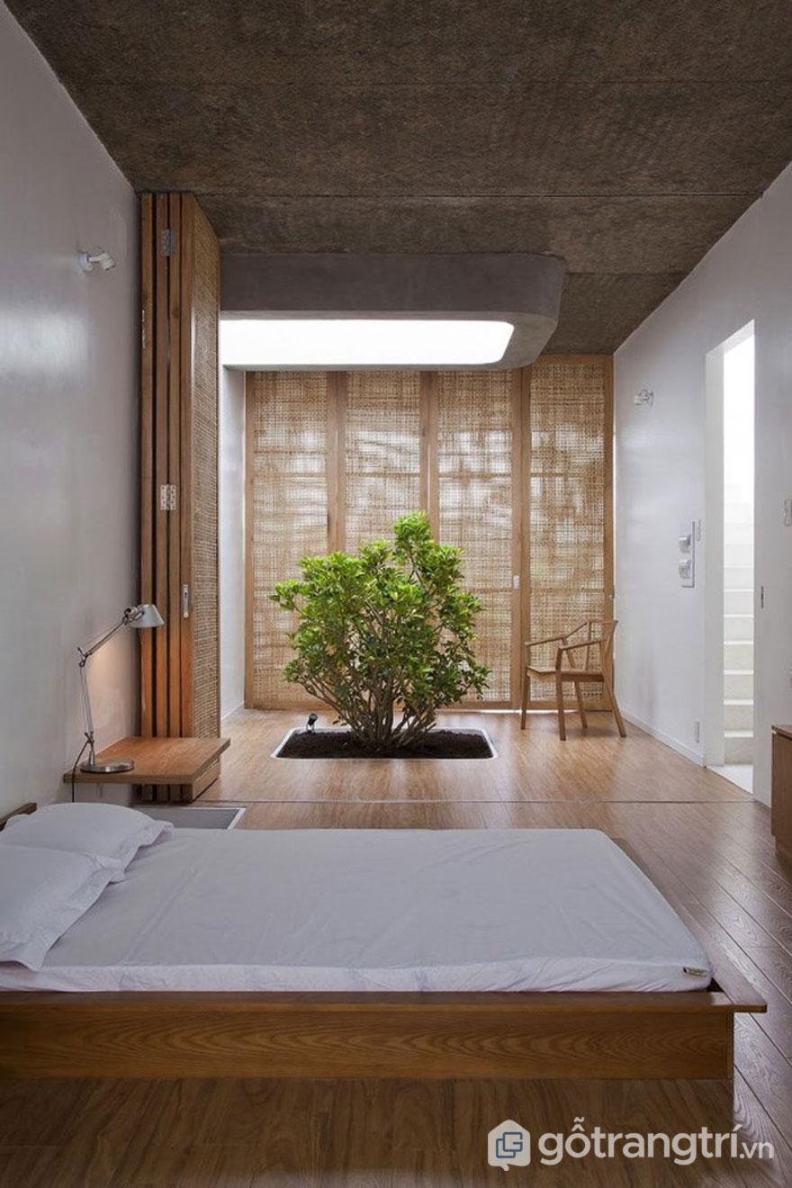 Phòng ngủ không thể thiếu sự xuất hiện của cây xanh (Ảnh: Internet)