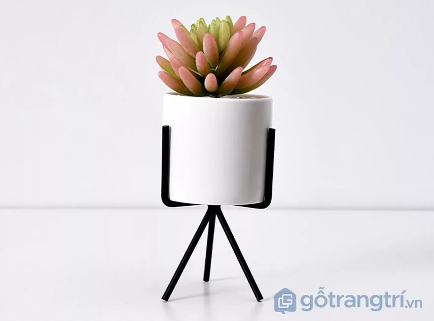 Cách trang trí bàn làm việc nhỏ bằng chậu cây cảnh