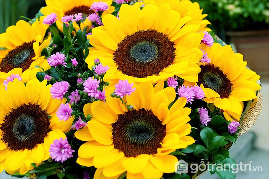 Lọ hoa hướng dương để bàn