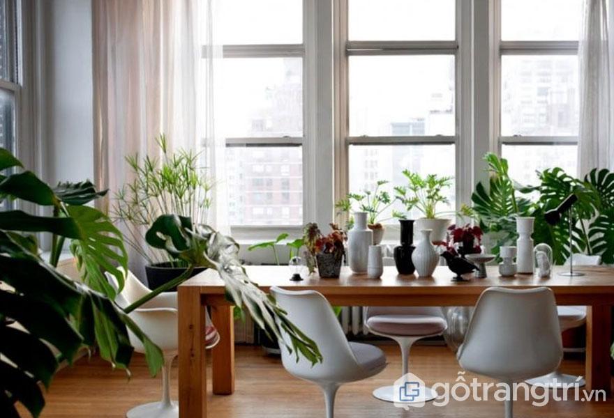 Căn phòng ngập tràn sắc xanh (Ảnh: Internet)