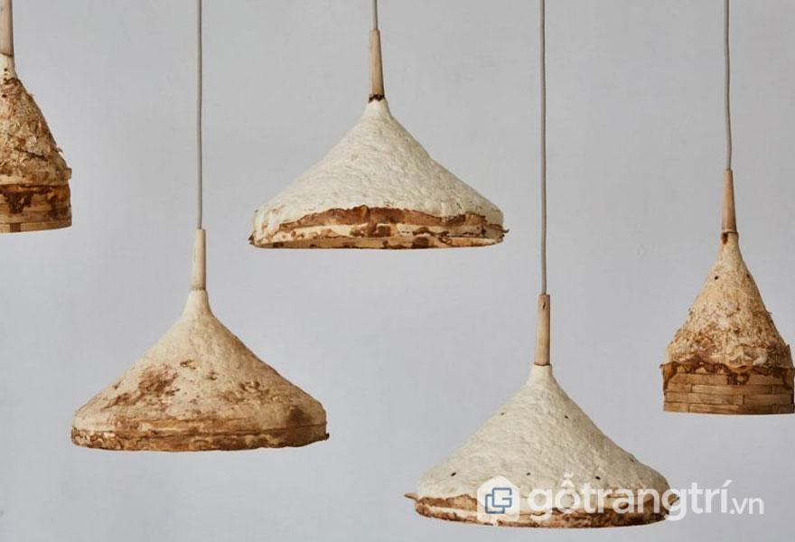 Những chiếc đèn thả trần hoàn toàn được làm từ nấm tự nhiên (Ảnh: Internet)