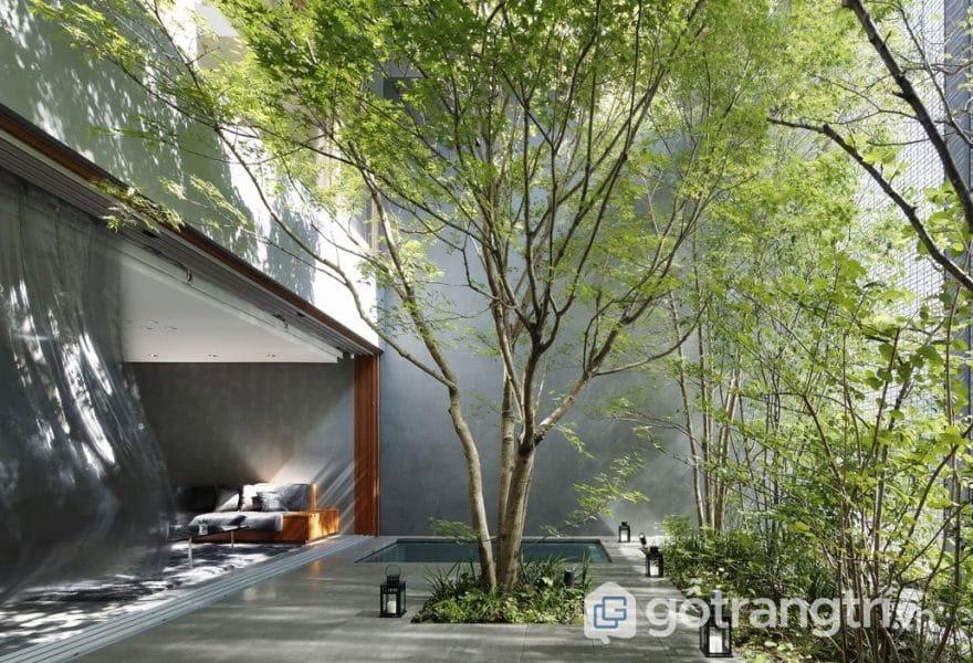 Cây xanh là yếu tố không thể thiếu của phong cách Eco (Ảnh: Internet)