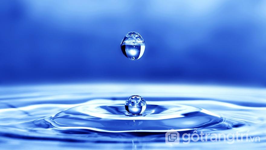 Đặc điểm tính cách người mệnh Thủy