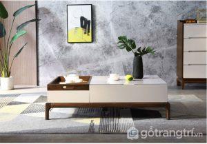 Ban-tra-sofa-phong-khach-phong-cach-hien-dai-GHS-4696 (9)