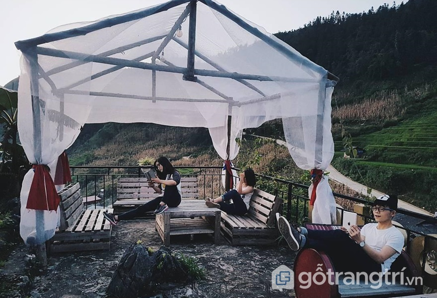 Khu vực cắm trại tại The Haven Sapa Camp Site - ảnh internet